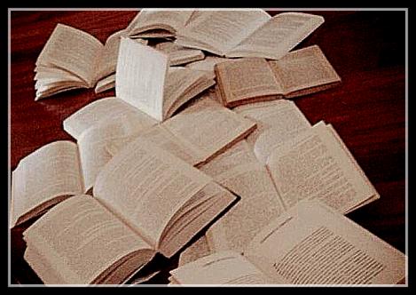 14-01-2015_Emilio Alessandro Manzotti_romanzo Freccia_La fantasia salverà i libri